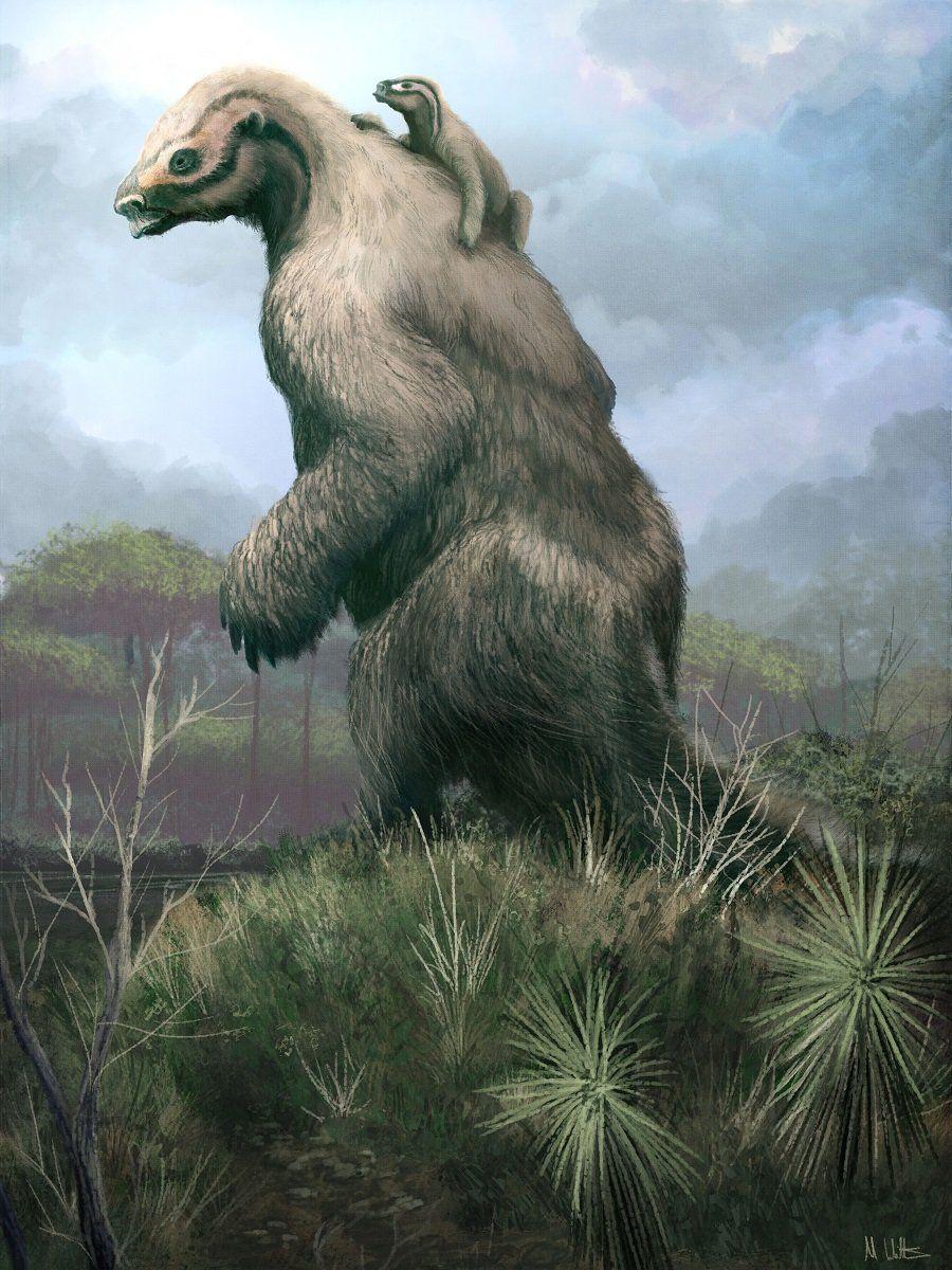 Mark Witton (@MarkWitton) on Twitter #prehistoriccreatures
