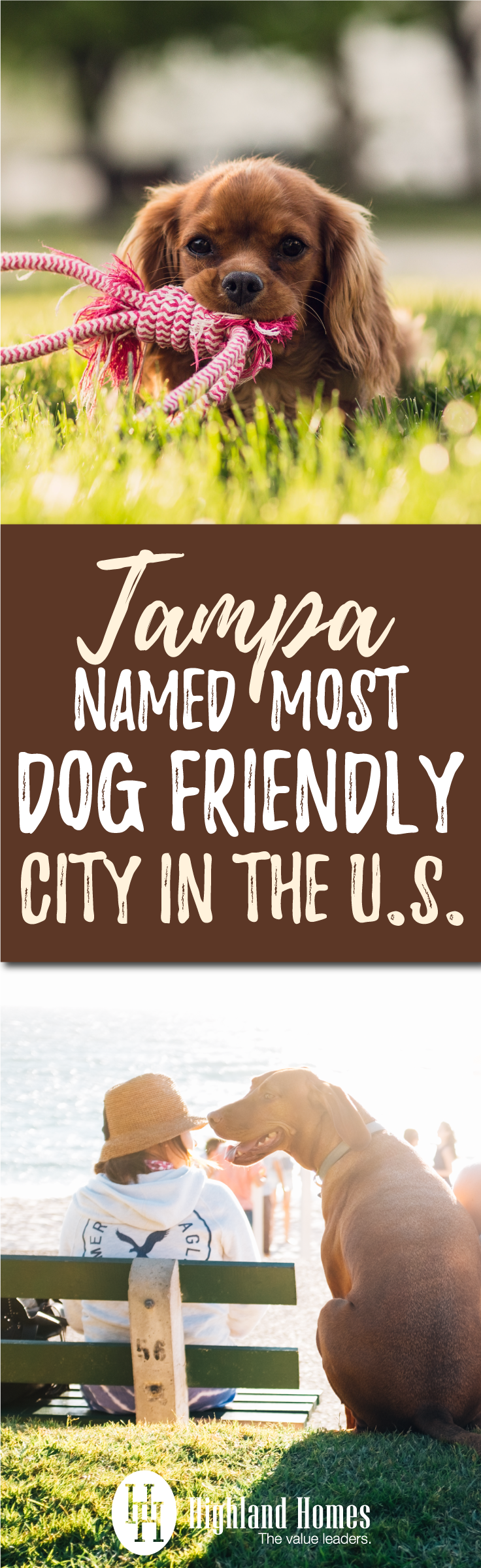 Did you know Tampa has so many dog-loving residents? Here are some ways you can have fun with Fido in the canine capital of the nation!