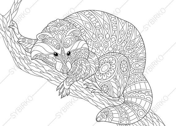 Raccoon Coloring Pages Animal Coloring Book Pages For Adults