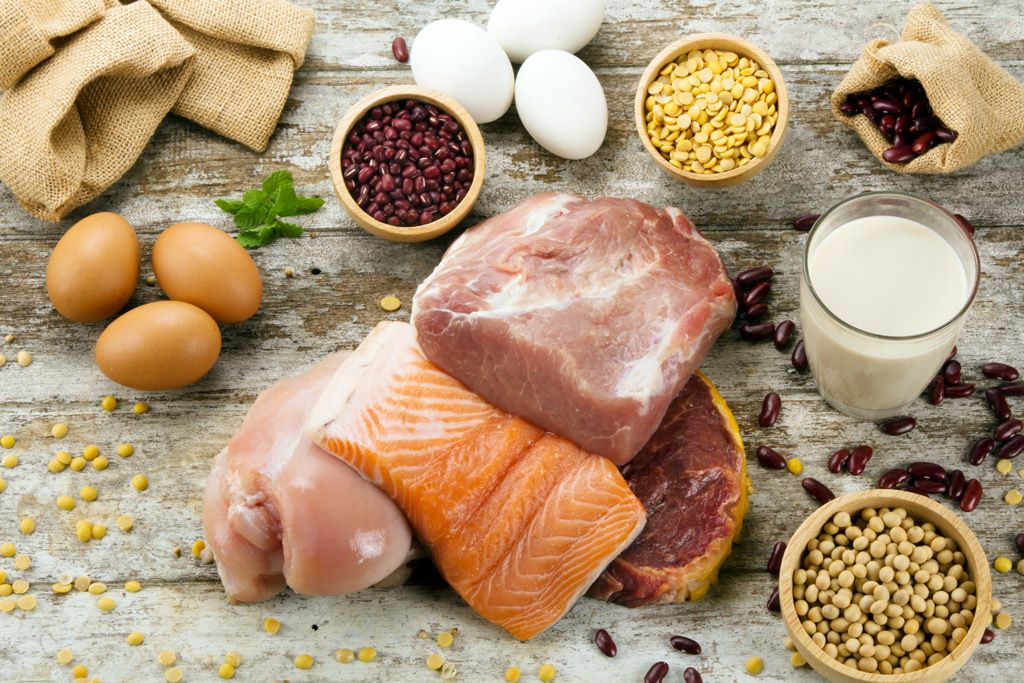 Dog nutrition the ultimate guide to a balanced diet in