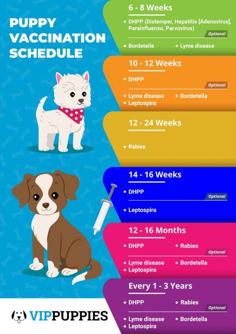 jackson health vaccine schedule