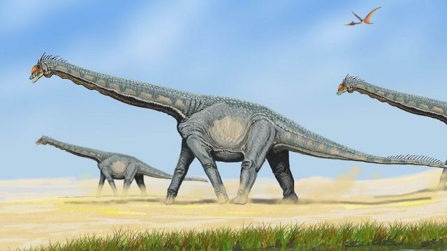 Newly discovered titanosaur was one of the largest land animals ever