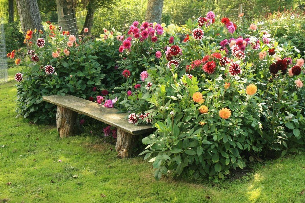 prayer gardens ideas | Garden ideas 3 | Prayer Garden | Pinterest ...