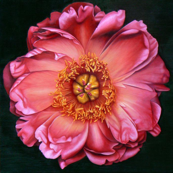 Madeleine Wood, Satin Peony, Oil on canvas