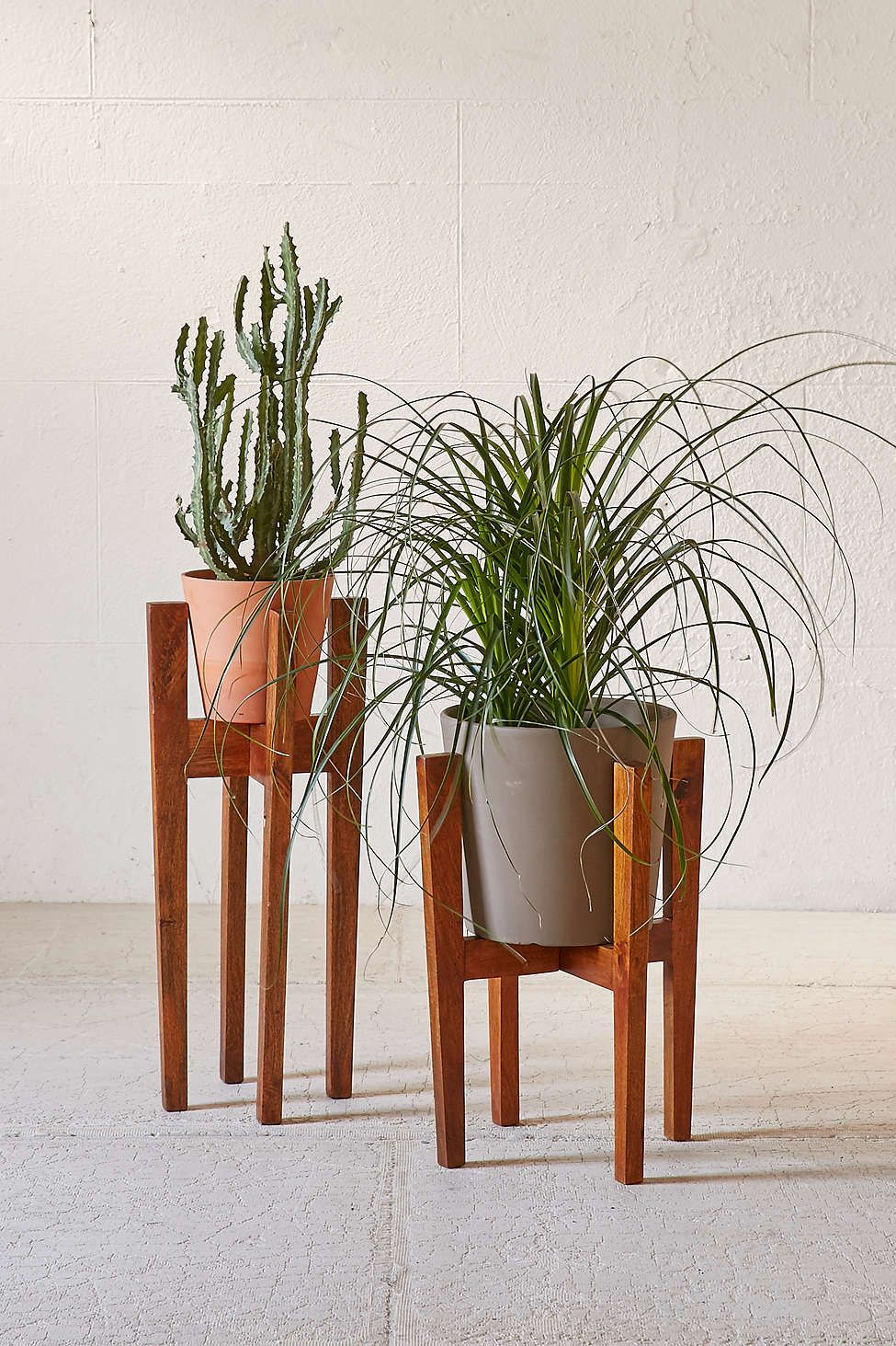 beautiful house plant stand. Knock Down Plant Stand  Plants Modern plant stand and Apartments