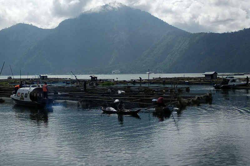 Kualitas Air Danau Batur Memprihatinkan Kualitas Air