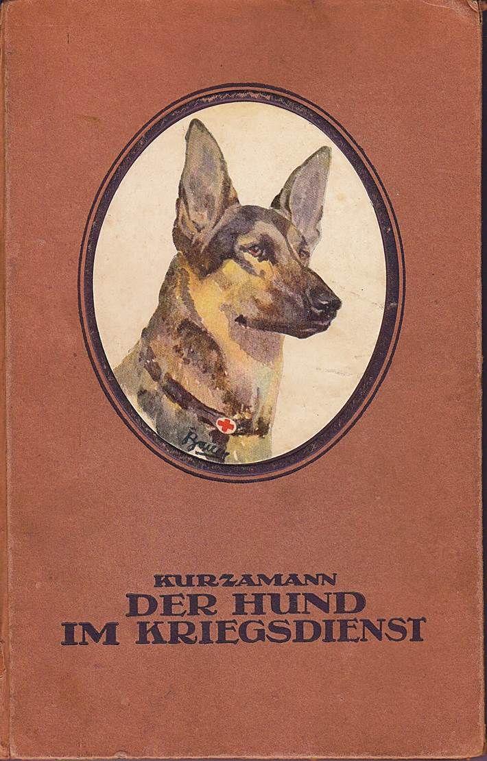 der hund im kriegsdienst von ing rupert kurzamman verlag hundesport und jagd bielefeld 1918. Black Bedroom Furniture Sets. Home Design Ideas