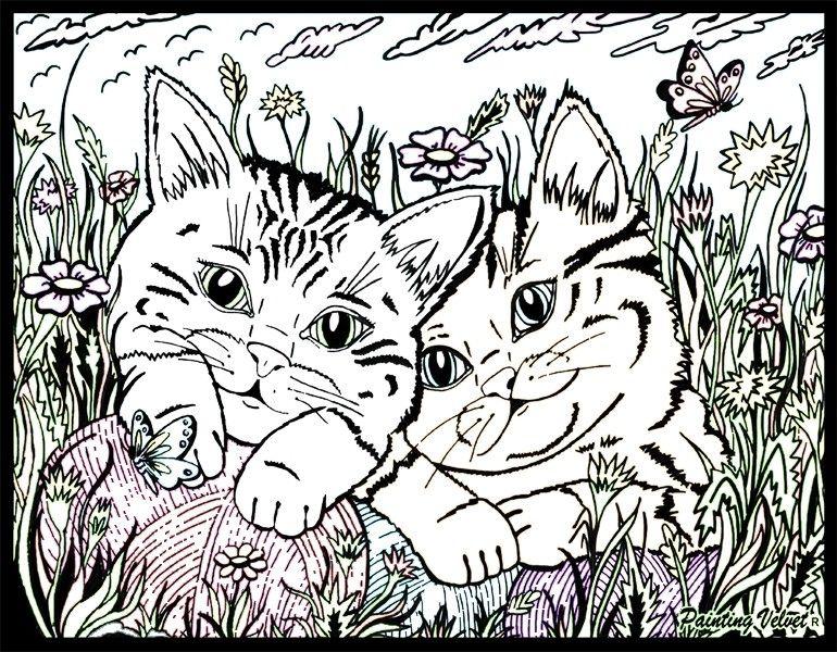 disegni da colorare con gattini