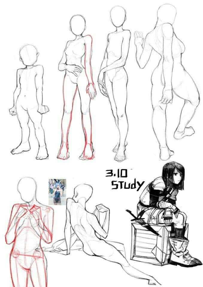 Pin de Pencil Bean en Dáng | Pinterest | Anatomía, Dibujo y Dibujar