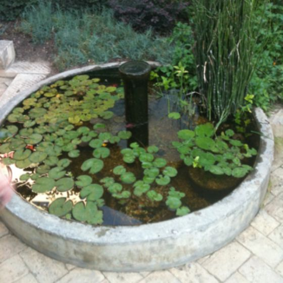 Easy concrete water feature. | Water features, Backyard ...