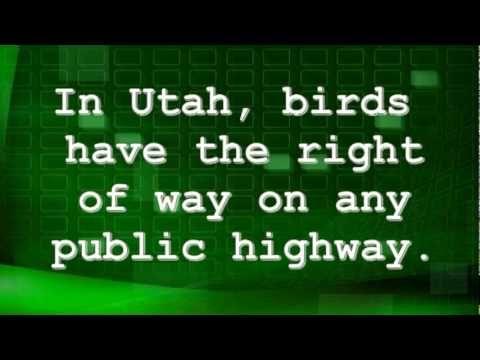 Stupid utah laws