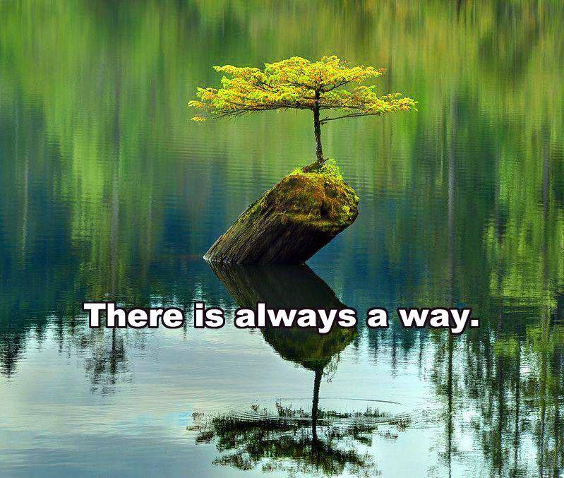 Siempre hay un camino