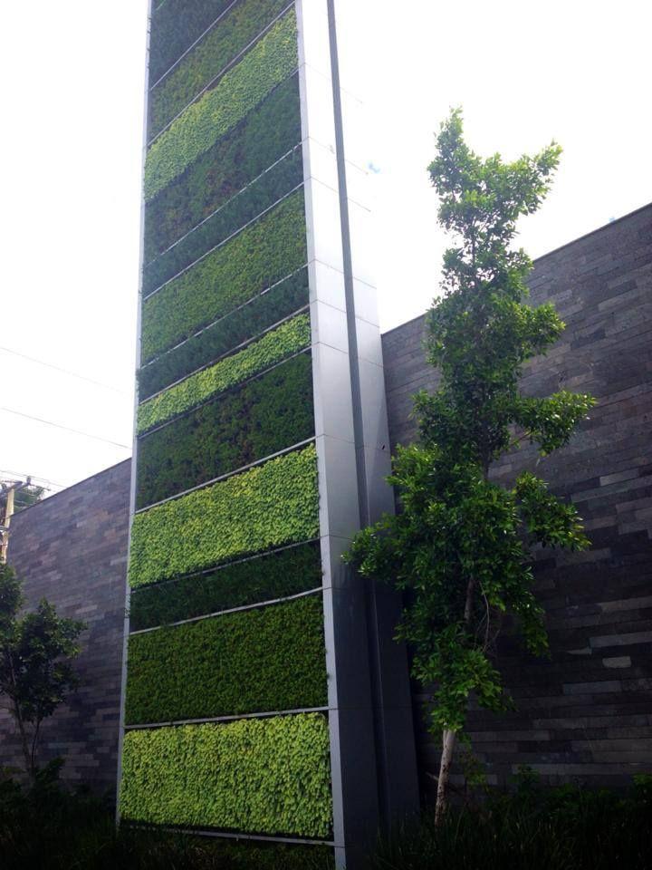 Muro verde verde vertical m xico ecological for Materiales para un muro verde