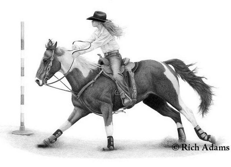 Dibujos De Caballos En Carboncillo Horse Drawings