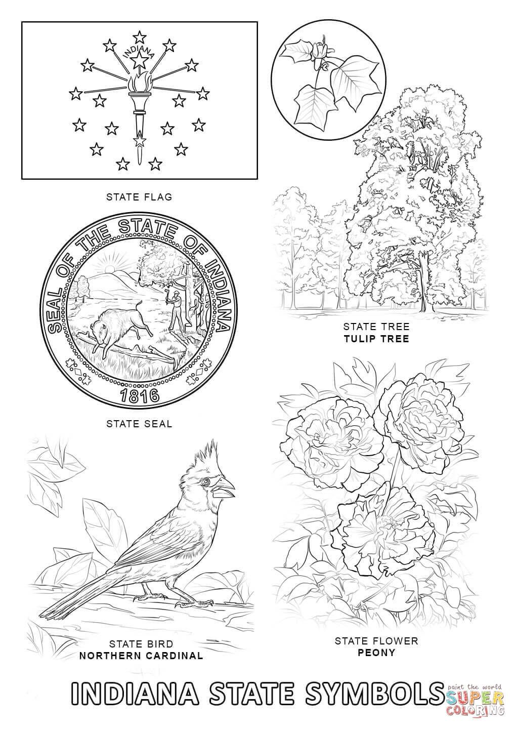 North Carolina State Symbols Coloring Pages Free