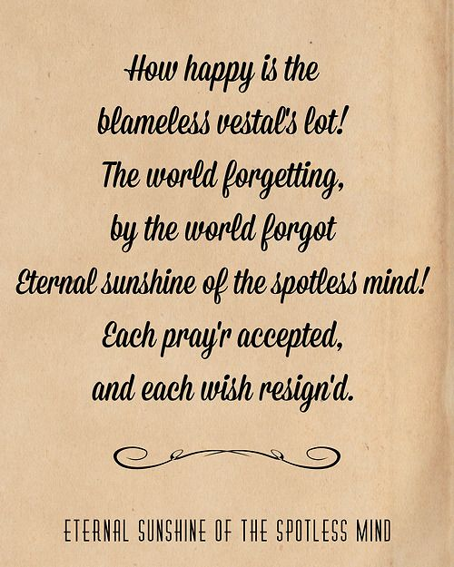 Eternal Sunshine Of The Spotless Mind Quote Alexander Pope : eternal, sunshine, spotless, quote, alexander, Eternal, Sunshine, Spotless, Google, Search, Mind,, Quotes,, Inspirational, Words