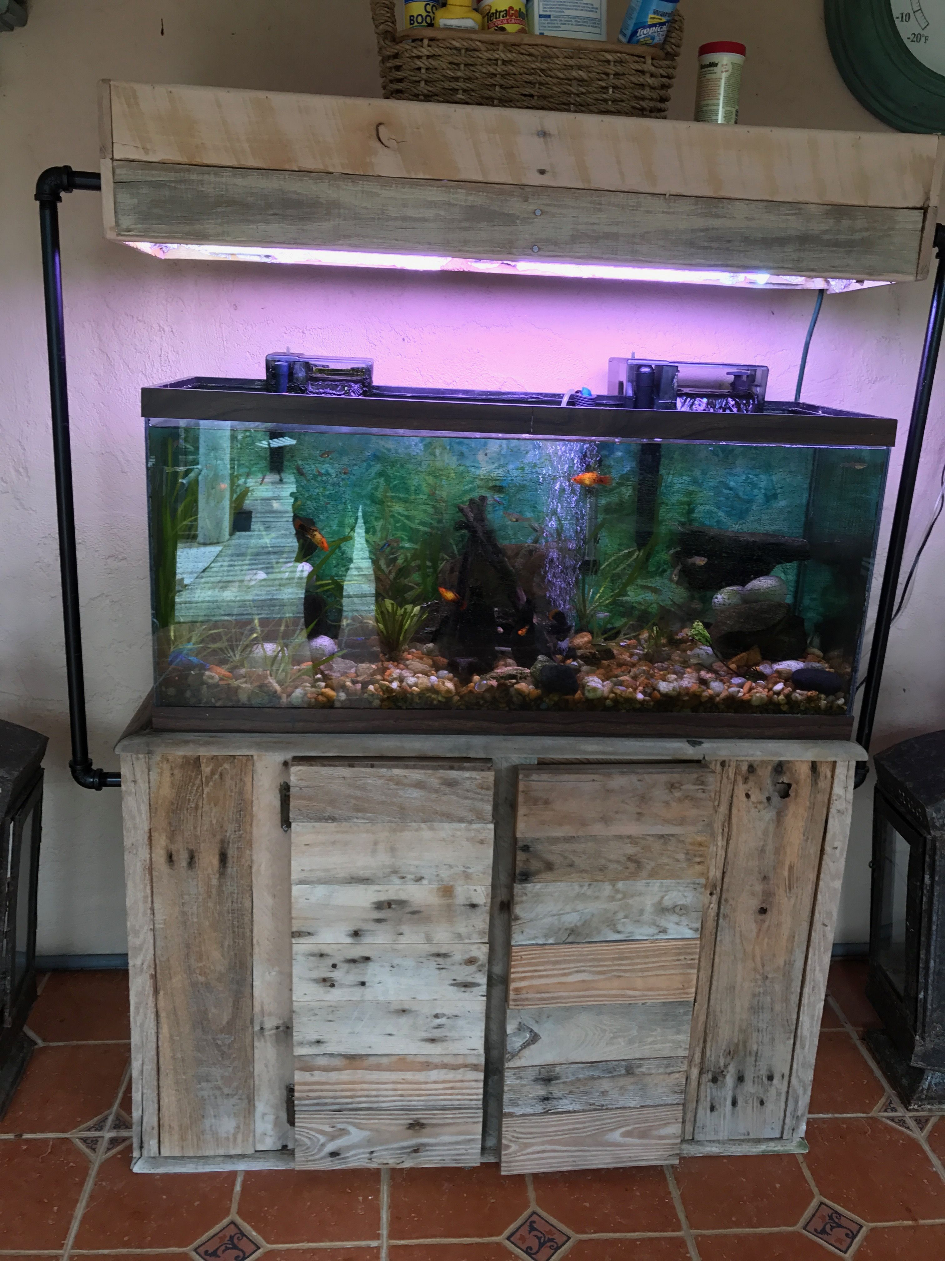 Pallet And Pipe Aquarium Stand And Light