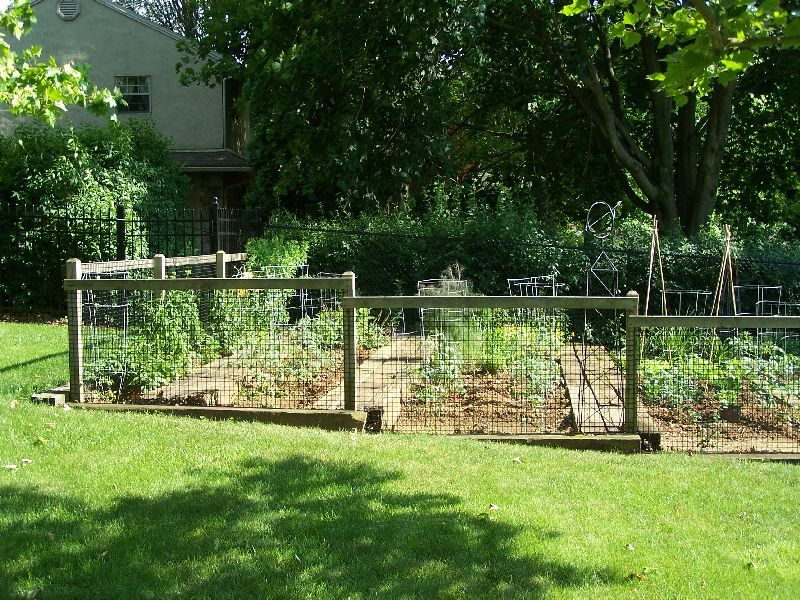 Eco Friendly Garden Fences Ideas : Green Lawn Small Garden Simple Garden  Fences Ideas   Check Stair Step Idea For Angles Of Yard.