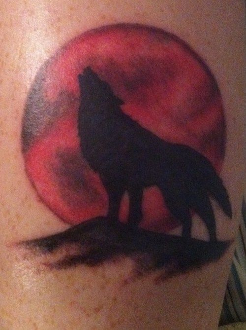 This Is Really Cool With Just The Shadow Of Wolf