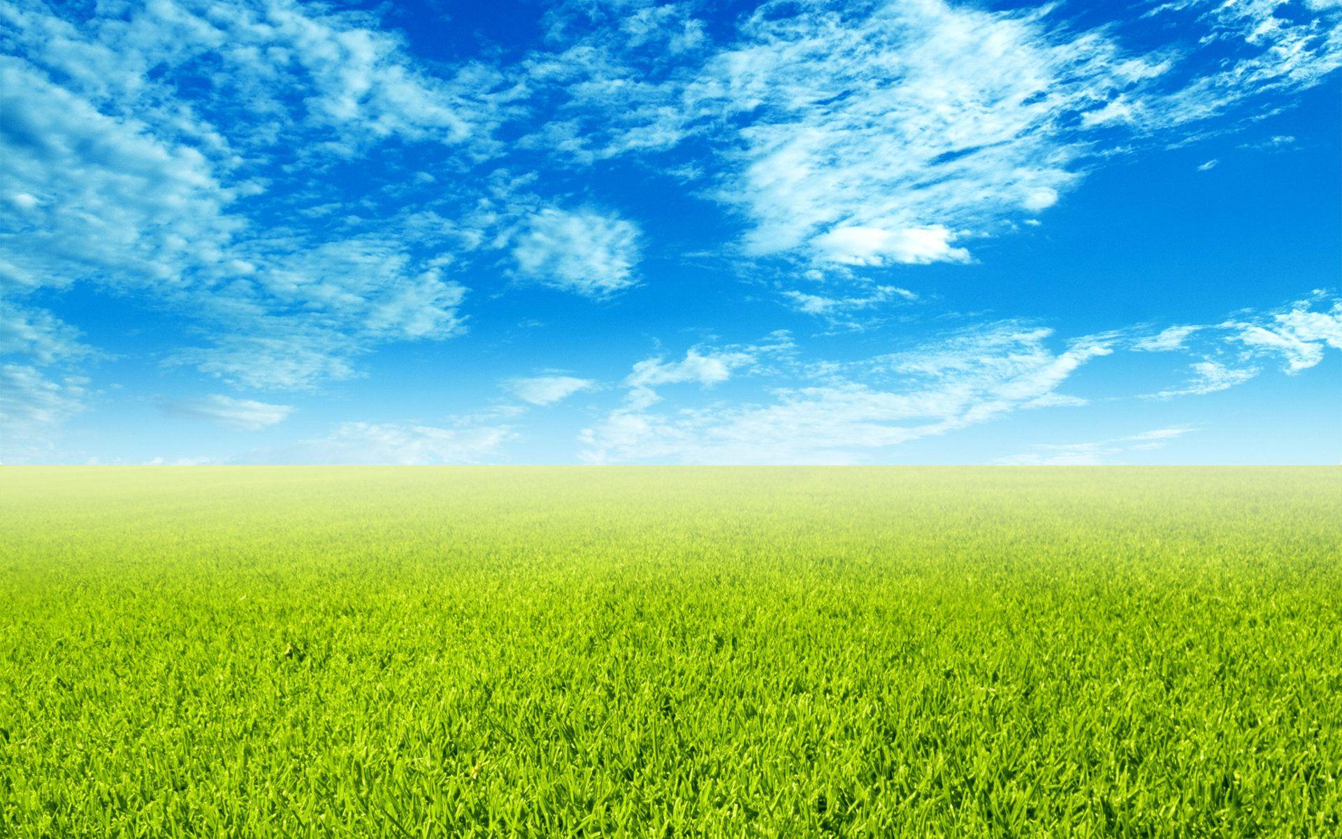 Green Field Wallpaper Field Wallpaper Free Wallpaper Backgrounds Landscape Wallpaper