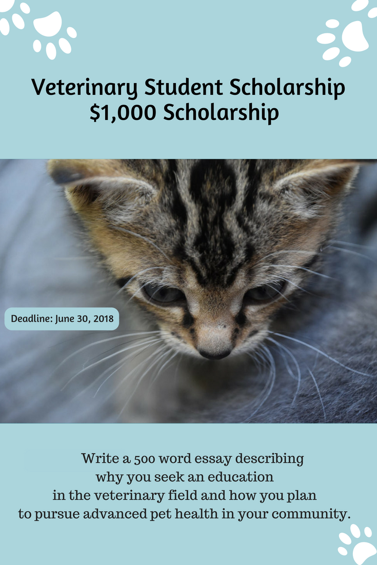 Healthy Paws Is Giving Away A 1 000 Scholarship To Future Vets College Scholarship Ve Scholarships For College Student Scholarships Scholarships