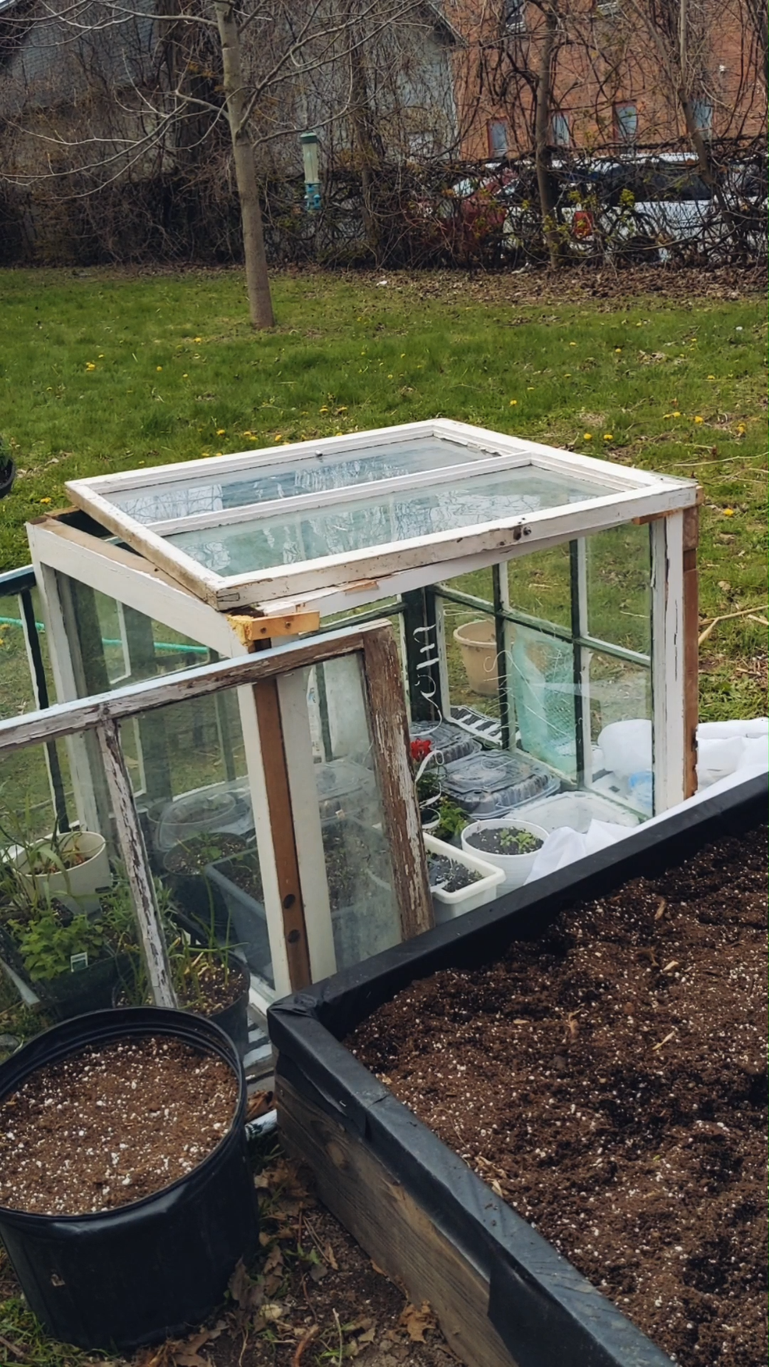 DIY Seedling Greenhouse from Old Windows