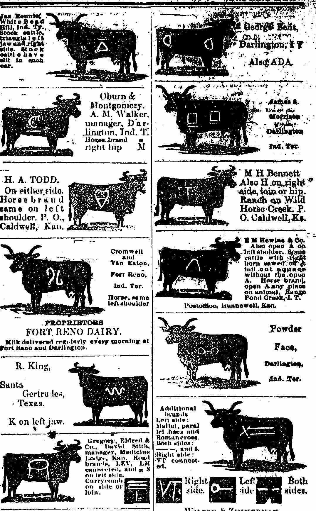 Brands wheres the beef pinterest cattle cattle brands buycottarizona