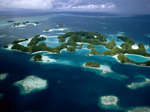 Palau Islands Photograph by Tim Laman Located in the western Pacific 733d41ed41403