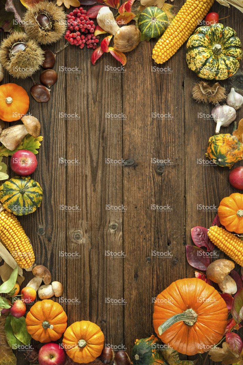 Harvest Or Thanksgiving Background With Autumnal Fruits And Gourds