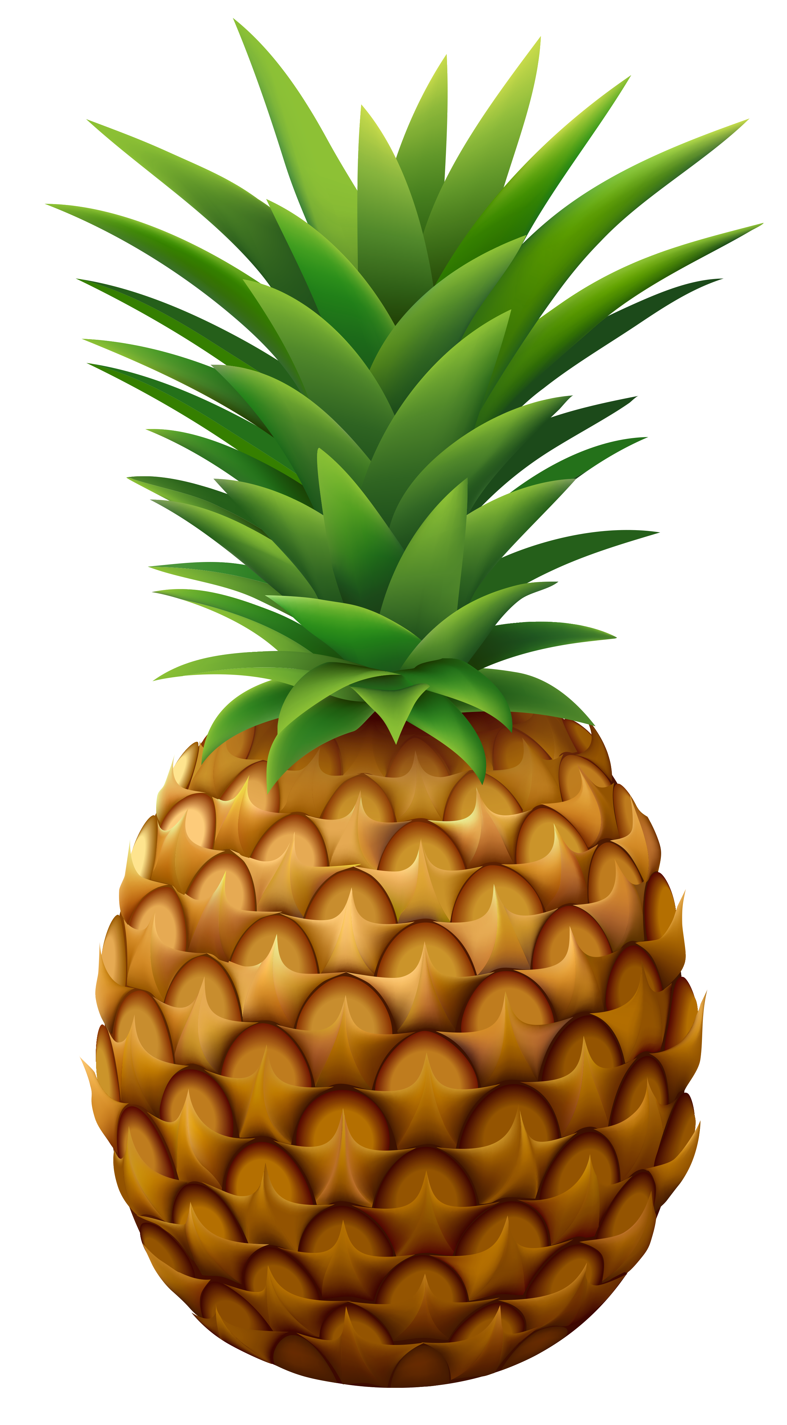Pineapple PNG Vector Clipart Image Gallery Yopriceville HighQuality Images and