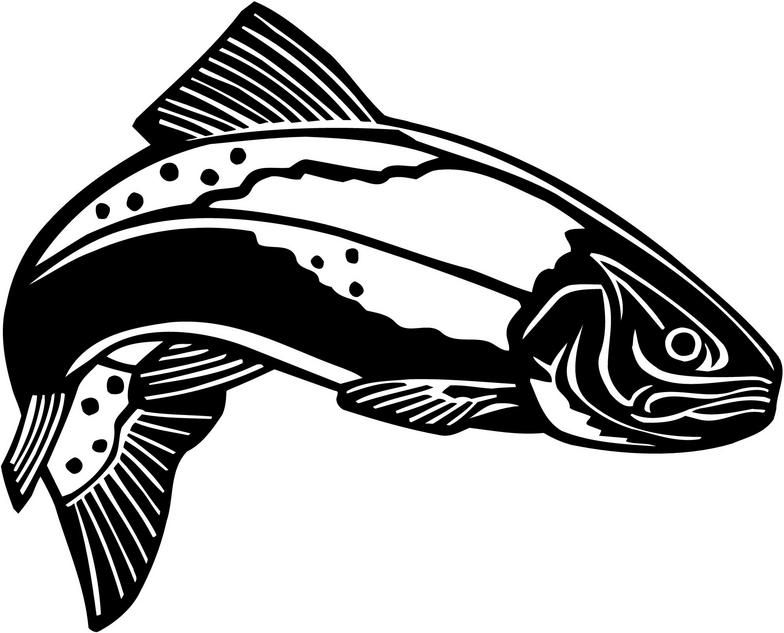 trout clip art images illustrations photos pic to see rh pinterest ie trout clip art free trout clip art images