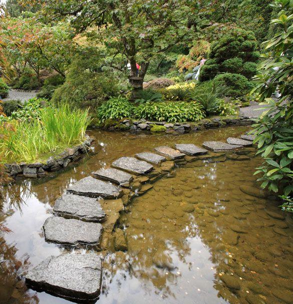 Rain Harvesting Into Soil Instead Of Rainwater Barrel Rain Garden Design Water Garden Garden Design