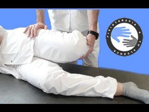 Cuadriceps, anatomia y estiramientos / Fisioterapia a tu alcance ...