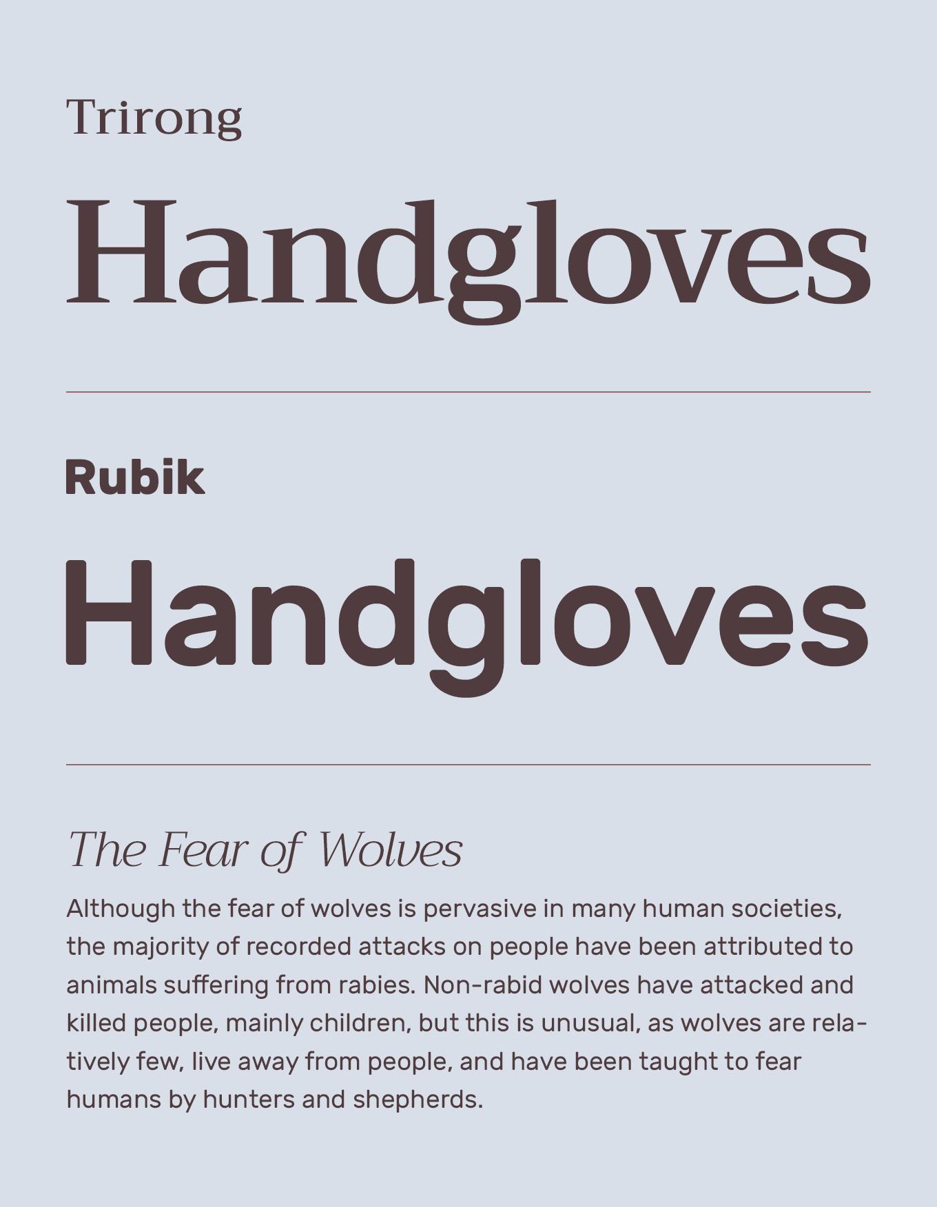 rubik google font
