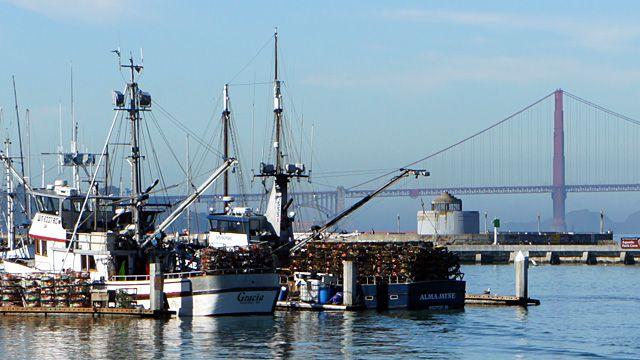 Crab Season Kicks Off With New Limits for Fishermen