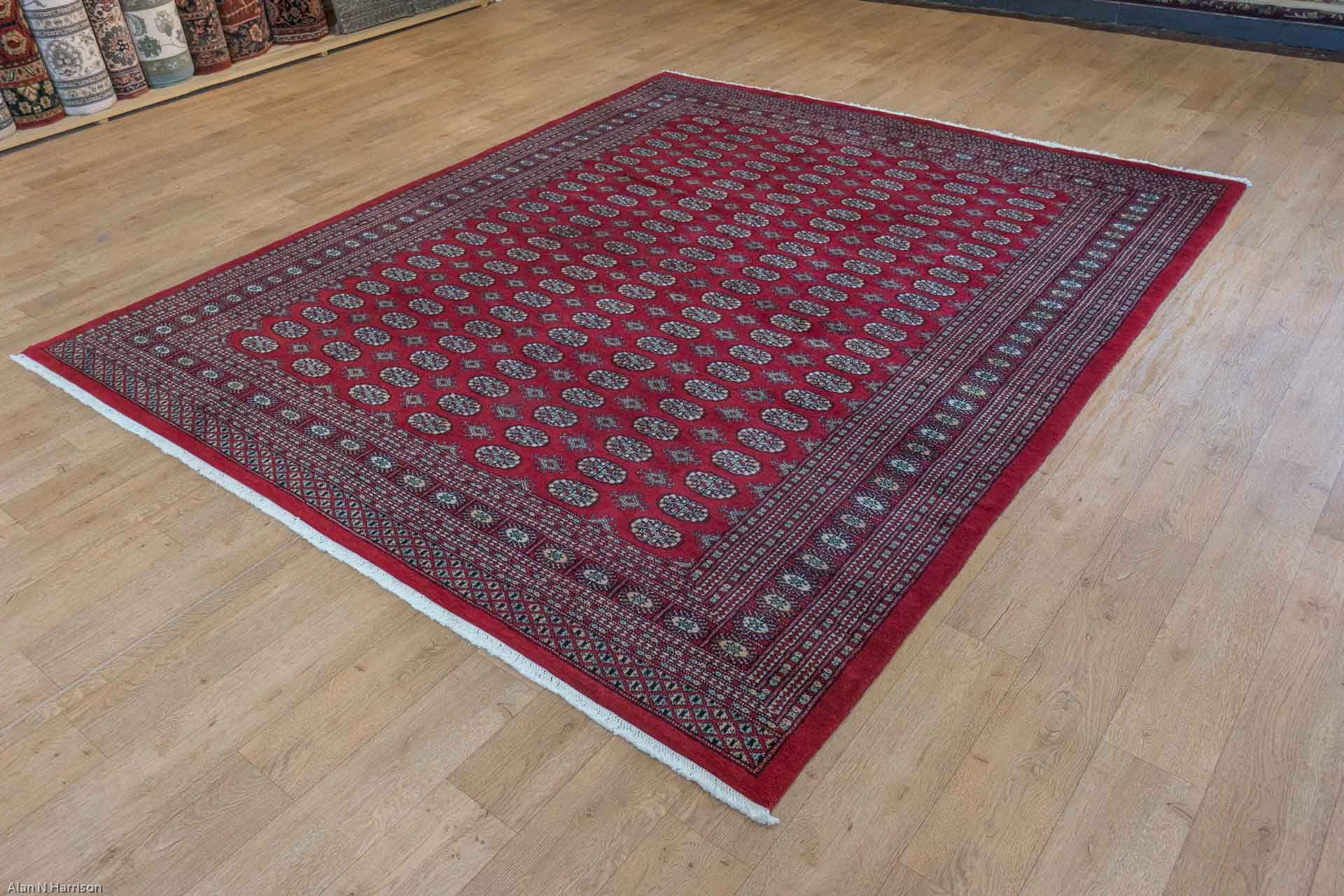 Hand Knotted Bokhara Rug From Stan