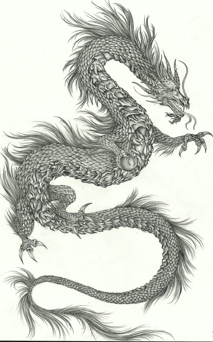 Korean Dragon Tattoo Meaning: Black Dragon - Google Search