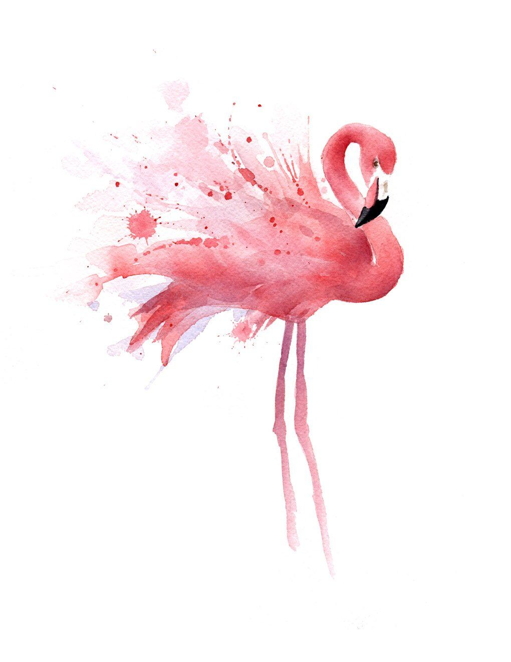 """Amazon.com : """"Flamingo"""" Watercolor Art Print Signed by Artist DJ Rogers : Everything Else"""