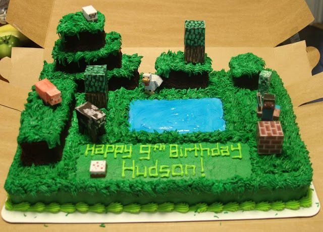 Small Town Fashionista DIY Birthday Themes Minecraft cake
