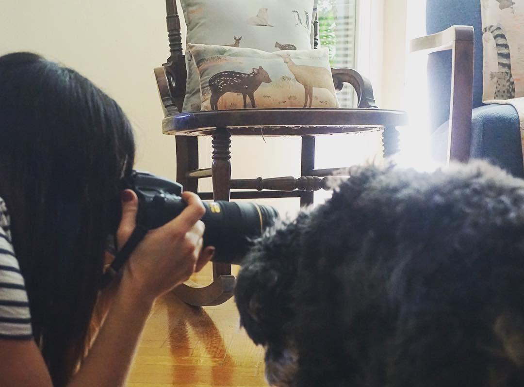Nada mejor que un asistente perro para sacar una buena foto. Gracias @natizaid por haber incluido a Froycito en el equipo. Fue una gran tarde. Vida #dogfriendly y G E N T I L con el Reino Animal.