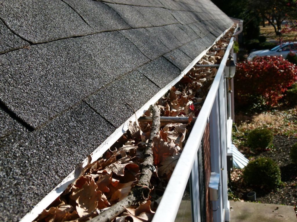 Roof Cleaning Service Vancouver Wa Northwest Roof Maintenance Termite Control Cleaning Gutters Wood Termites