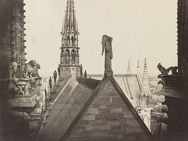 Les Combles pris de la Galerie des Tours (The Roofs of Notre Dame, from the Gallery of Towers)