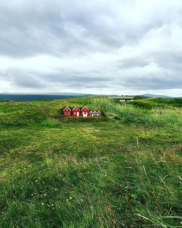 #tinyhouses I found in #iceland 🏠