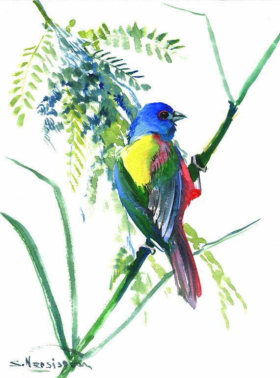 Painted Bunting Original Waterocolor Painting 12 X 9 In Blue