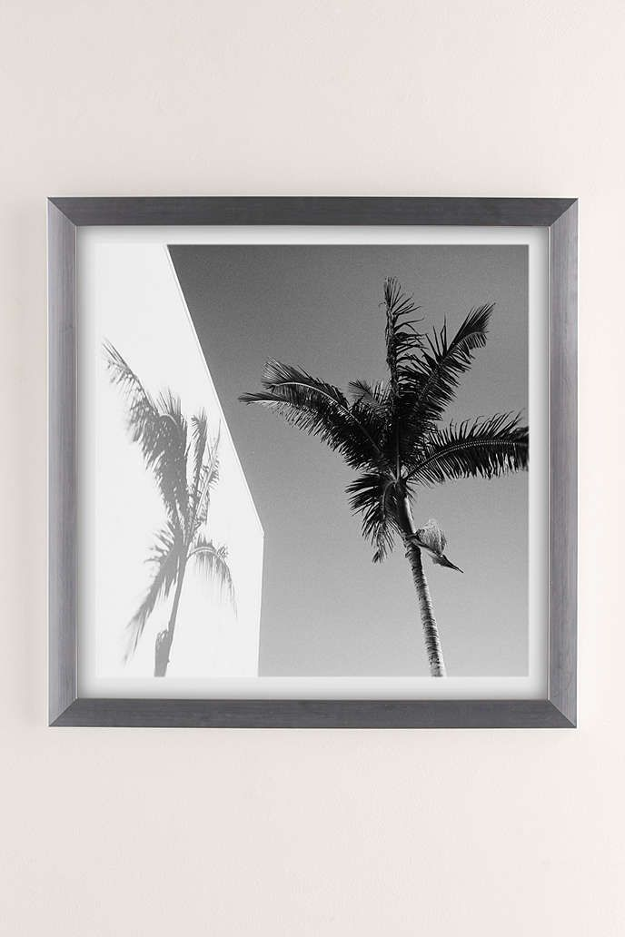Max Wanger Palm Art Print   Spaces and House