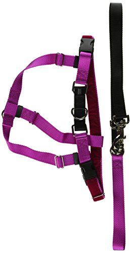 Freedom Nopull Dog Harness Training Package 1 Width Large Pink Check Out The Image By Visiting Dog Harness Dog Training Obedience Puppy Obedience Training