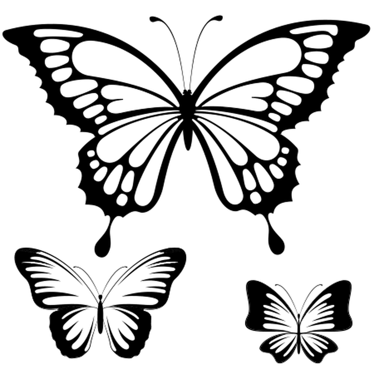 Épinglé par Djawad Zahya sur papillon | Coloriage papillon, Pochoir papillon, Dessin papillon