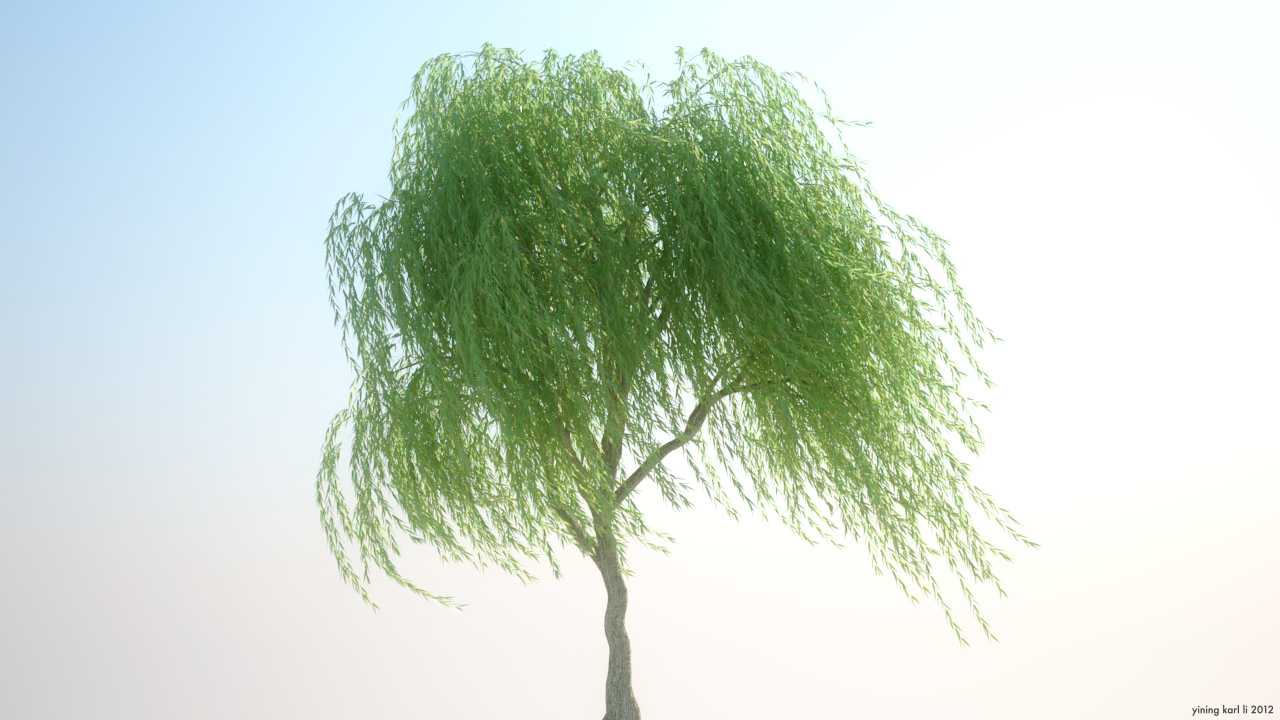 Weeping Willow in the wind. | Willow tattoo | Pinterest | Tattoo