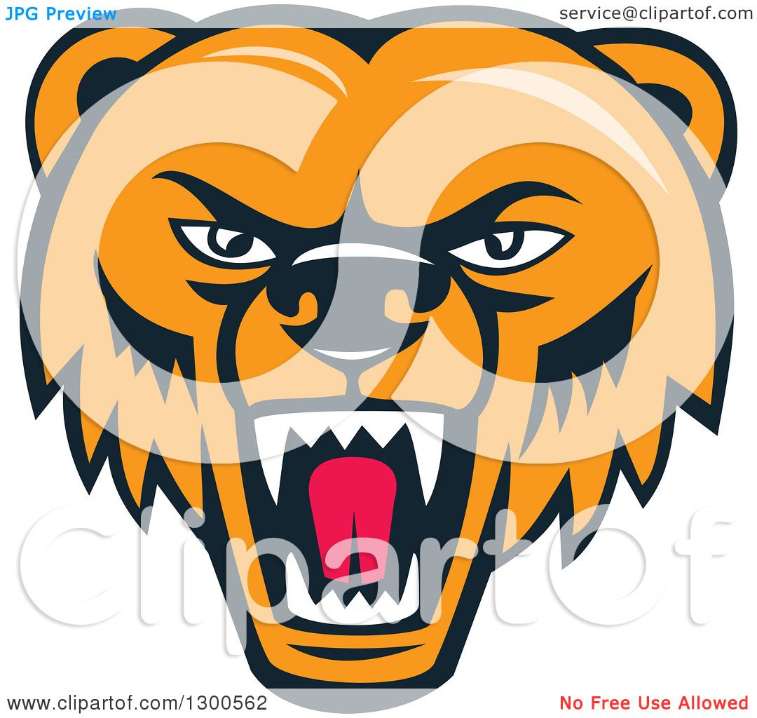 Clipart of a Cartoon Roaring Angry Grizzly Bear Face - Royalty Free Vector…