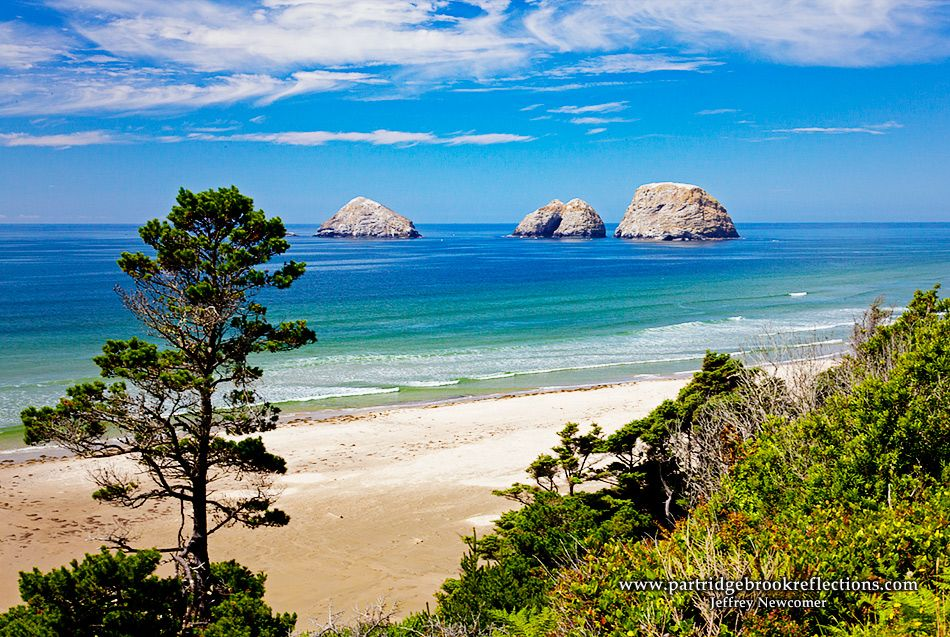 Getting it Right in the Digital Camera : Photography on the Oregon Coast